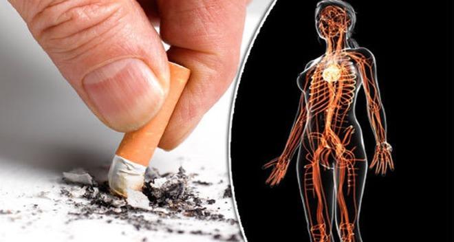 Cai thuốc lámang lại nhiều lợi ích sức khỏe cho cơ thể. Ảnh: DE