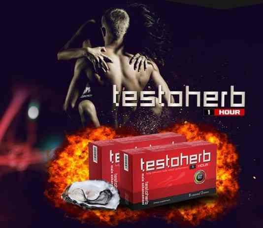 Testoherb-1hour-tot-khong