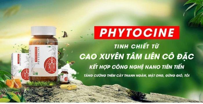 Phytocine tinh chiết từ xuyên tâm liên